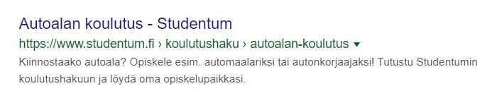 google-haku-snippet